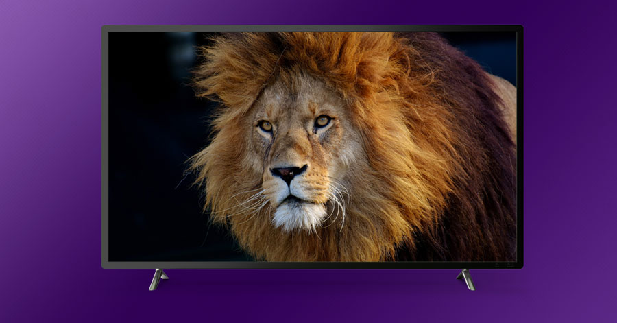 animal channels on roku
