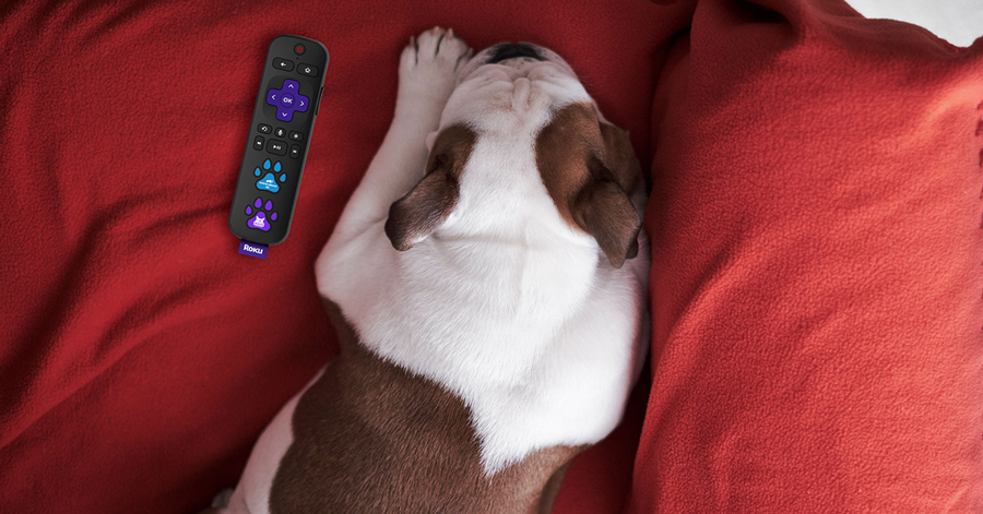 Roku introduces pet-friendly streaming remote