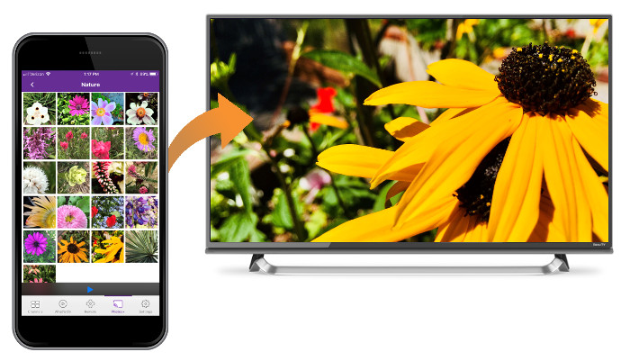 Roku mobile app sending photo to TV