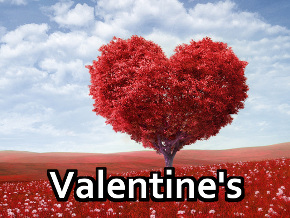 Valentine's Day Screens