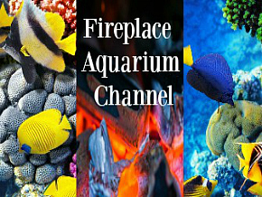 Fireplace Aquarium Channel