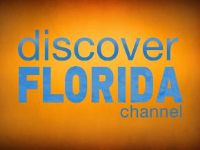 Discover Florida