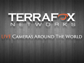 Terrafox TV
