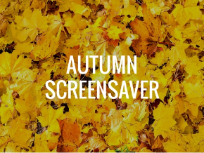 Autumn Screensaver Roku Channel Store Roku