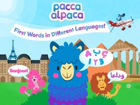 Pacca Alpaca - Videos & Songs Logo