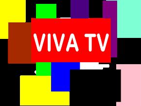 Arabic live channel   Roku Channel Store   Roku