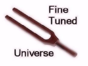 Fine Tuned Universe