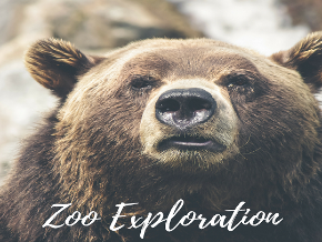 Zoo Exploration TV