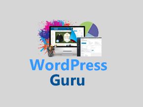 WordPress Guru