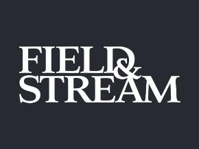 field stream roku channel store roku